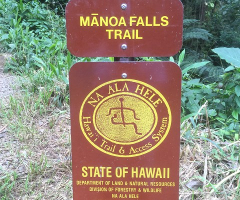 Manoa Falls Entry Sign (480x640)